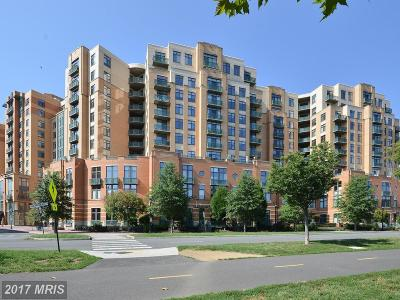 Arlington Condo For Sale: 2720 Arlington Mill Drive S #1010