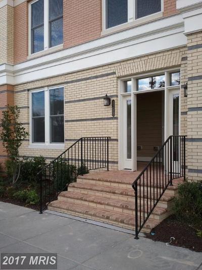 Potomac Yard, Potomac Yard Condominium, Potomac Yards Rental For Rent: 2213 Jefferson Davis Highway #101