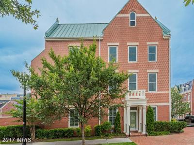 Potomac Yard, Potomac Yard Condominium, Potomac Yards Rental For Rent: 701 McKenzie Avenue