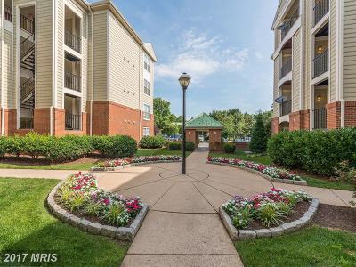 Alexandria Condo For Sale: 1100 Quaker Hill Drive #401