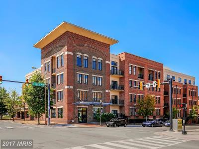 Alexandria Condo For Sale: 181 Reed Avenue E #210