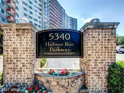 Alexandria Rental For Rent: 5340 Holmes Run Parkway #304