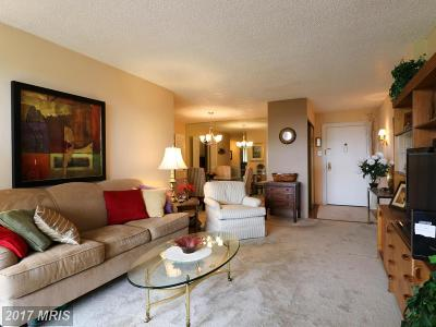 Alexandria Rental For Rent: 5300 Holmes Run Parkway #912