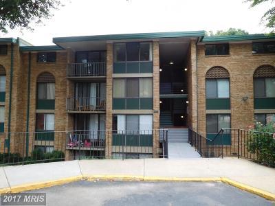 Alexandria Rental For Rent: 503 Armistead Street N #301