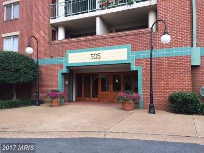 Alexandria Rental For Rent: 505 Braddock Road #604