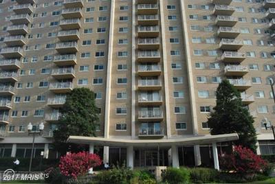 Alexandria Rental For Rent: 1225 Martha Custis Dr #916