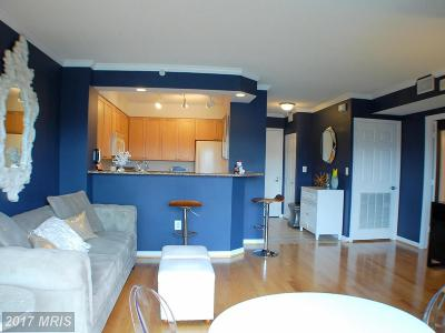 Alexandria Rental For Rent: 3101 Hampton Drive #808