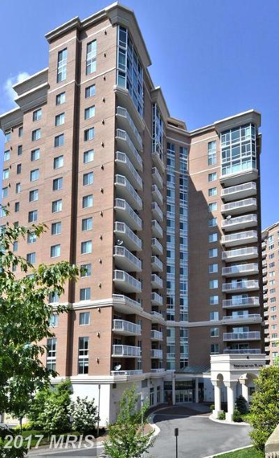 Alexandria Condo For Sale: 3101 Hampton Drive #1111