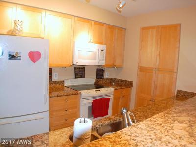 Alexandria Rental For Rent: 3101 Hampton Drive #707