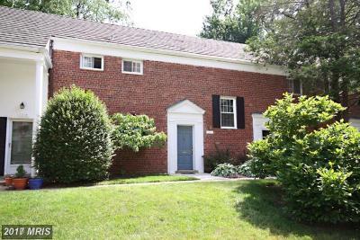 Parkfairfax Rental For Rent: 1220 Martha Custis Drive #513