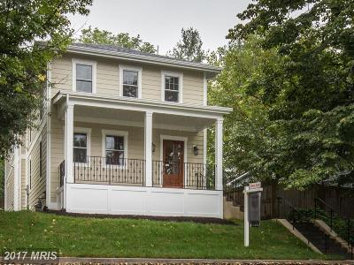 Alexandria Single Family Home For Sale: 103 Linden Street E
