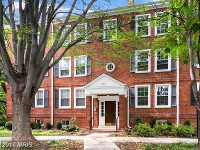Arlington Condo For Sale: 2952 Columbus Street #C1