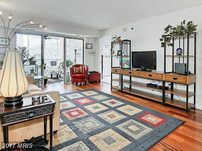 Alexandria Rental For Rent: 2181 Jamieson Avenue #707