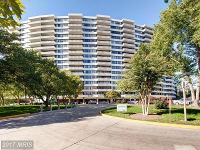 Alexandria Rental For Rent: 6301 Stevenson Avenue #1303