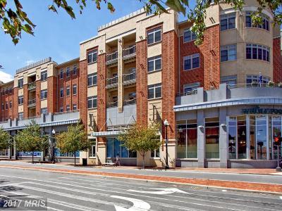 Alexandria Condo For Sale: 309 Holland Lane #107