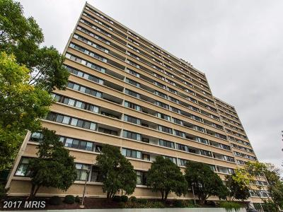 Alexandria Condo For Sale: 5911 Edsall Road #201