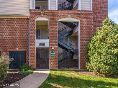 Alexandria Rental For Rent: 4850 Eisenhower Avenue #106