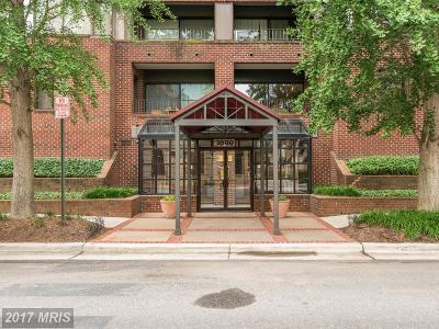 Alexandria Rental For Rent: 1600 Prince Street #611