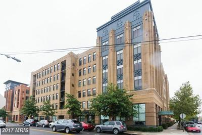 Alexandria Rental For Rent: 525 Fayette Street N #309