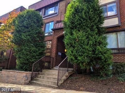 Alexandria Condo For Sale: 104 Roberts Lane #301