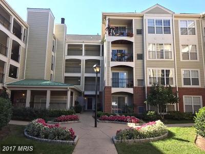 Alexandria VA Condo For Sale: $245,000