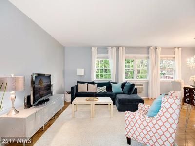 Alexandria Condo For Sale: 1533 Mount Eagle Place #1533