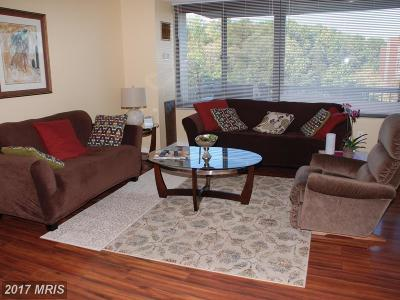 Alexandria Rental For Rent: 5500 Holmes Run Parkway #517