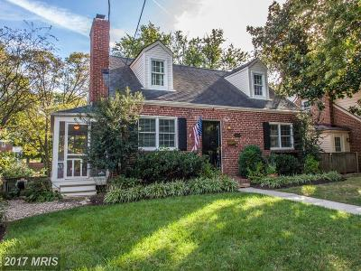 Alexandria Single Family Home For Sale: 604 View Terrace S