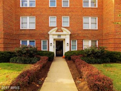 Alexandria Rental For Rent: 719 St Asaph Street S #304