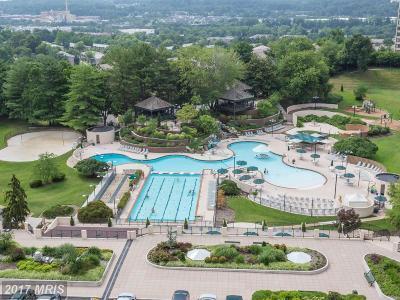Alexandria Rental For Rent: 307 Yoakum Parkway #816