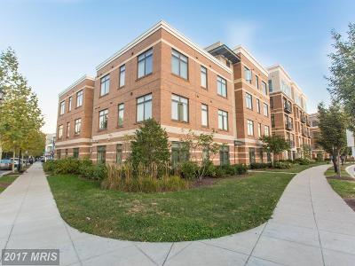 Alexandria Rental For Rent: 915 N Patrick Street #202