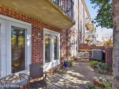 Alexandria Condo For Sale: 801 Pitt Street S #228