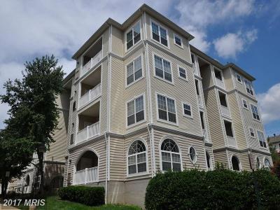 Alexandria Rental For Rent: 4561 Strutfield Lane #3213