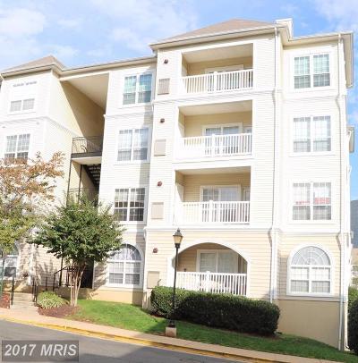 Alexandria Rental For Rent: 4561 Strutfield Lane #3218
