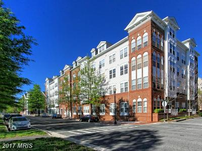 Alexandria Rental For Rent: 171 Somervelle Street #205