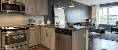 Potomac Yard, Potomac Yard Condominium, Potomac Yards Rental For Rent