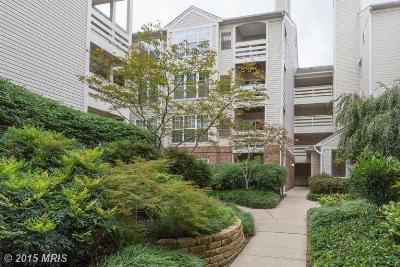Condo/Townhouse Sold: 244 Reynolds Street #205