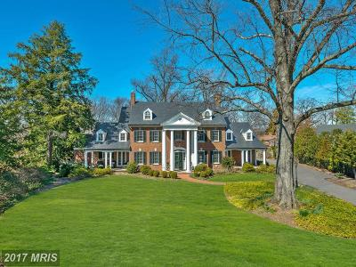 Alexandria Single Family Home For Sale: 319 Mansion Drive