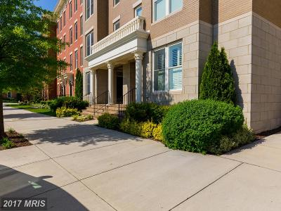 Potomac Yard, Potomac Yard Condominium, Potomac Yards Townhouse For Sale: 2308 Potomac Avenue #101