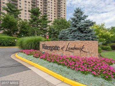 Alexandria Rental For Rent: 307 Yoakum Parkway #817