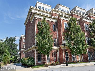 Federal Hill, Federal Hill - Riverside, Federal Hill South Condo For Sale: 1301 Covington Street