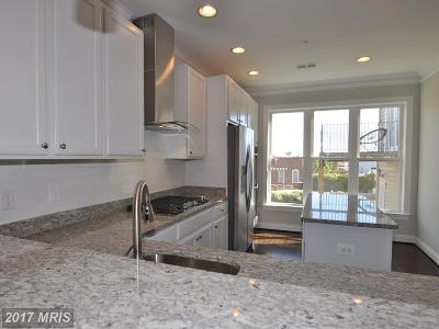 Baltimore Townhouse For Sale: 529 Canton Court