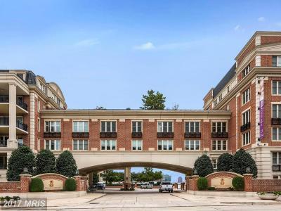 Baltimore City Rental For Rent: 801 Key Highway #353
