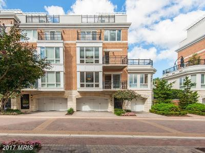 Baltimore Townhouse For Sale: 906 Valencia Court #185