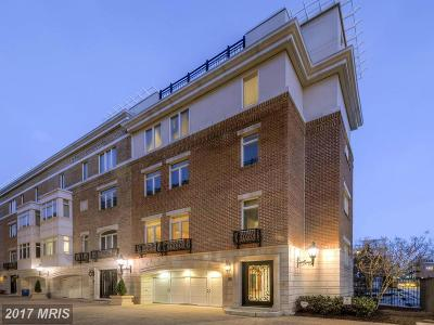 Baltimore City Rental For Rent: 601 Ponte Villas North #151