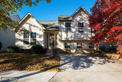 Baltimore City Single Family Home For Sale: 5030 Yellowwood Avenue