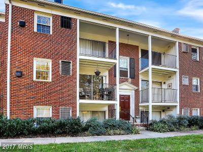 Baltimore Single Family Home For Sale: 2410 Cold Spring Lane