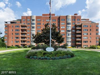 Guilford, Guilford/Jhu Condo For Sale: 3601 Greenway #710