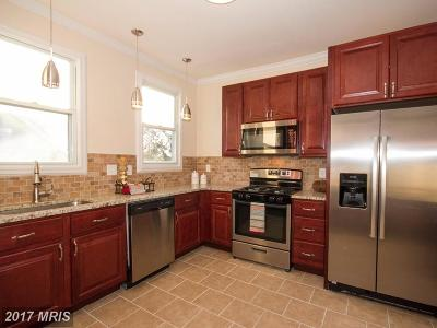 Baltimore Single Family Home For Sale: 4423 Forest View Avenue