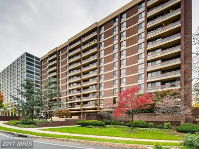 Guilford, Guilford/Jhu Condo For Sale: 4100 Charles Street #911